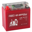 Аккумулятор DS 1210  Red Enerdgy