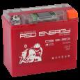 Аккумулятор DS 12201  Red Enerdgy