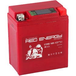 DS 1207.1  Red Enerdgy